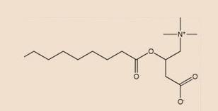 Bio Balance ホワイトニングアイクリーム(UNDER EYE BAGS & DARK CIRCLES)の成分