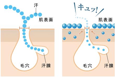 フェノールスルホン酸亜鉛の効果