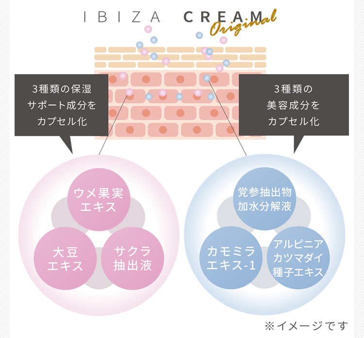 IBIZA CREAM(イビサクリーム)配合成分